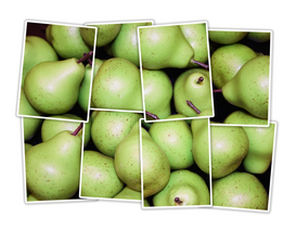 Collage pictures Wall Art as Canvas, Acrylic or Metal Print Pear photo montage