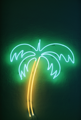 Neon sign pictures bijv. als canvasfoto of wandfoto achter acrylglas: USA, Florida, neon palm tree