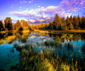 Foto: Lagos, ríos y cascadas - USA, Wyoming, Schwabacher Landing, Grand Teton National Park, Wyoming...