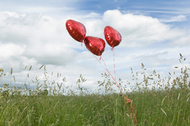 Love & happiness pictures Wall Art as Canvas, Acrylic or Metal Print Heart shaped balloons in field