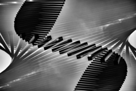 EyeEm Abstrakte Bilder z.B als Leinwandbild oder Wandbild hinter Acrylglas: Close-Up Of Wavy Piano Keys