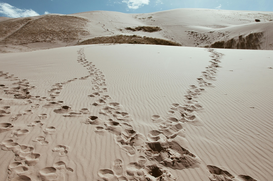 Affiches Eyeem pour les toiles ou images murales sous acrylique par exemple Footprints On Sand In Gobi Desert