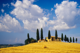 Landscape pictures Wall Art as Canvas, Acrylic or Metal Print Podere Belvedere im Val d`Orcia