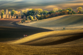 Landscape pictures Wall Art as Canvas, Acrylic or Metal Print Autumn fields