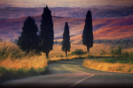 Landscape pictures Wall Art as Canvas, Acrylic or Metal Print LANDSCAPE OF TUSCANY NEAR SIENA ITALY