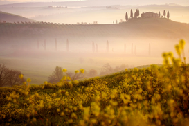 Landscape pictures Wall Art as Canvas, Acrylic or Metal Print Orcia valley in spring