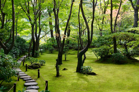 Park & garden pictures Wall Art as Canvas, Acrylic or Metal Print Japan
