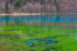 Reis om de wereld Foto's bijv. als canvasfoto of wandfoto achter acrylglas: Lake in Jiuzhaigou National Park, China
