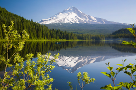 Bestselling Pictures Wall Art as Canvas, Acrylic or Metal Print Mount hood and trillium lake
