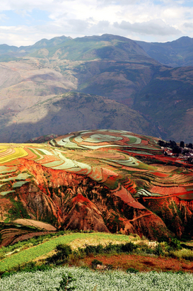 Landscape pictures Wall Art as Canvas, Acrylic or Metal Print Reisfelder in Yunnan