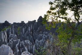 World travel pictures Wall Art as Canvas, Acrylic or Metal Print Stone Forest, Yunnan Province, China