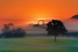 Sunset pictures Wall Art as Canvas, Acrylic or Metal Print Foggy landscape at sunrise