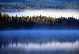 EE.UU. y Canadá Imágenes p.ej., como imagen en lienzo o para la pared en metacrilato: Fog reflected in Trillium Lake, Mount Hood National Forest