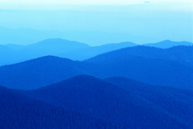 Canadian & American Landscapes Wall Art as Canvas, Acrylic or Metal Print Hills of Colville National Forest