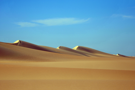 Desert landscapes Wall Art as Canvas, Acrylic or Metal Print Sahara - Großes Sandmeer