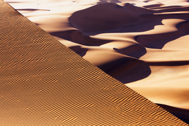 Desert landscapes Wall Art as Canvas, Acrylic or Metal Print Wind tracks in dunes in the Namib Desert