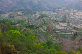 Foto: Reis om de wereld - Yuanyang from the air, China