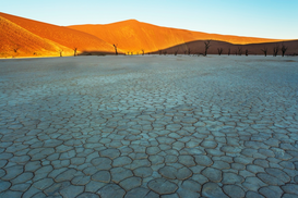 Foto: Woestijn - Dunes rising from dry bed at Dead Vlei