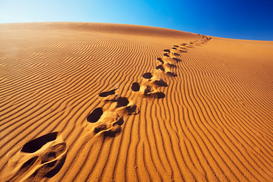 Foto: Woestijn - Footprints in desert