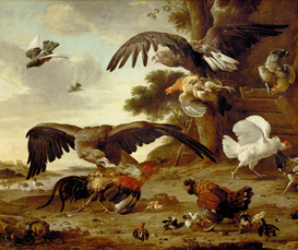 Rembrandt & de Barok Foto's bijv. als canvasfoto of wandfoto achter acrylglas: Eagles attacking chickens, 1673. Canvas,