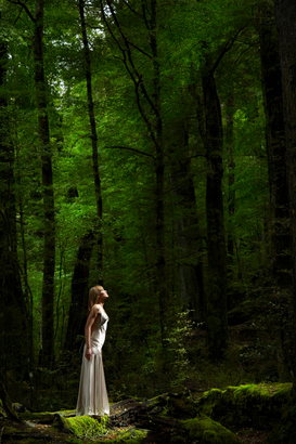 Mensen Foto's bijv. als canvasfoto of wandfoto achter acrylglas: Woman in Evening Dress in Forest