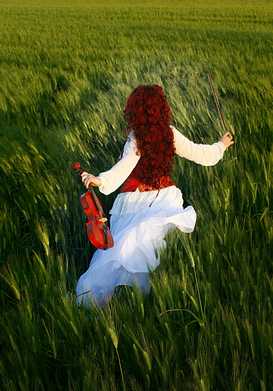 Music pictures Wall Art as Canvas, Acrylic or Metal Print Musician in field