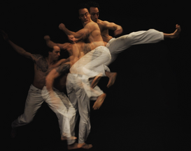 Dance pictures Wall Art as Canvas, Acrylic or Metal Print Capoeira