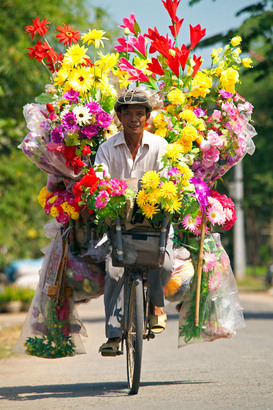 People of the world pictures Wall Art as Canvas, Acrylic or Metal Print Man selling flowers from his bicycle.