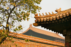 Pictures of Asia Wall Art as Canvas, Acrylic or Metal Print Roofs in forbidden city beijing