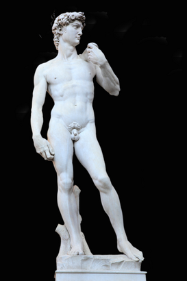 Pictures of Europe Wall Art as Canvas, Acrylic or Metal Print David Statue von Michelangelo, Freisteller, Florenz, Toskana, Italien