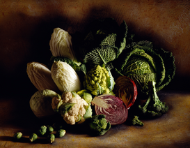 Still Life pictures Wall Art as Canvas, Acrylic or Metal Print assorted cabbages