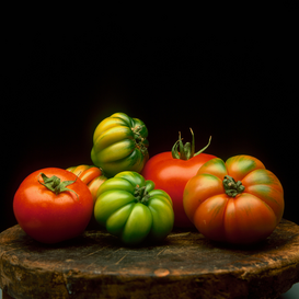 Still Life pictures Wall Art as Canvas, Acrylic or Metal Print Tomatoes