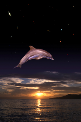 Sea Life pictures Wall Art as Canvas, Acrylic or Metal Print Flying Dolphin - Springender Delphin
