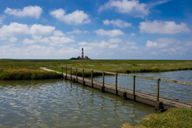 Lighthouse, harbor & fjord pictures Wall Art as Canvas, Acrylic or Metal Print Footbridge on path leading to lighthouse, Westerhever, Germany