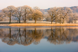 Bestseller foto's bijv. als canvasfoto of wandfoto achter acrylglas: Cumbria, England; Lake scenic with autumn trees reflected in water
