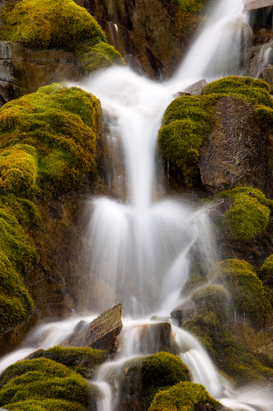 New Pictures Wall Art as Canvas, Acrylic or Metal Print Mossy cascade, banff national park, alberta, canada.