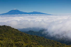 Foto: Eilanden - View of Mount Teide