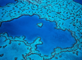 Space & Satellite images Wall Art as Canvas, Acrylic or Metal Print Great Barrier Reef,Aerial