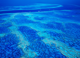 Satellite Images & Aerial Photography Wall Art as Canvas, Acrylic or Metal Print Great Barrier Reef,Aerial